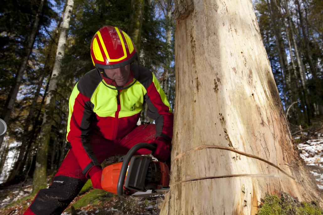 Forstarbeiter beim Sägen eines Baumes